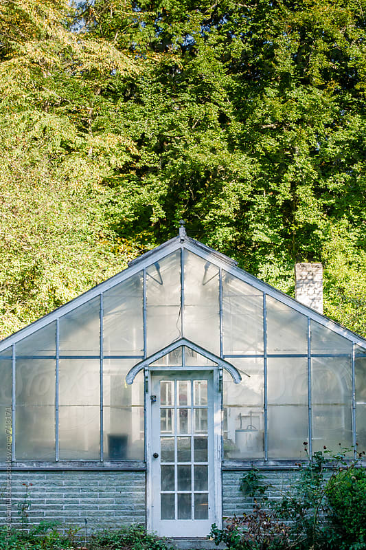 Vintage Greenhouse by Terry Schmidbauer for Stocksy United