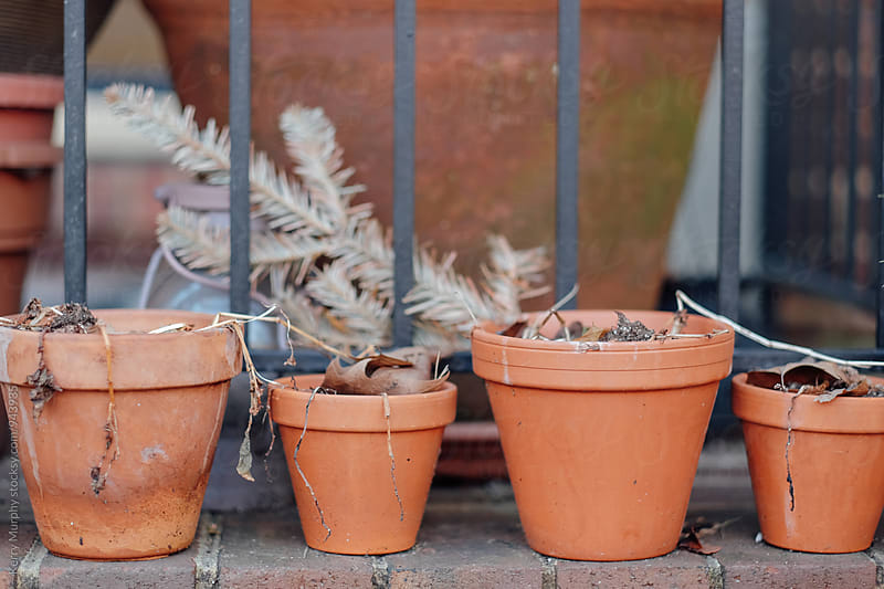 Empty terra cotta pots on step in early spring by Kerry Murphy for Stocksy United