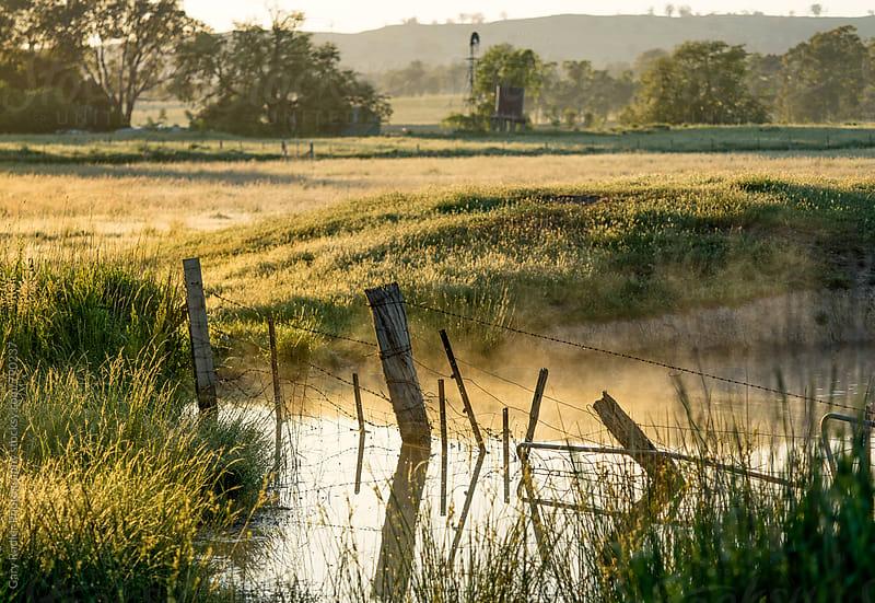 Morning on an Australian Farm by Gary Radler Photography for Stocksy United