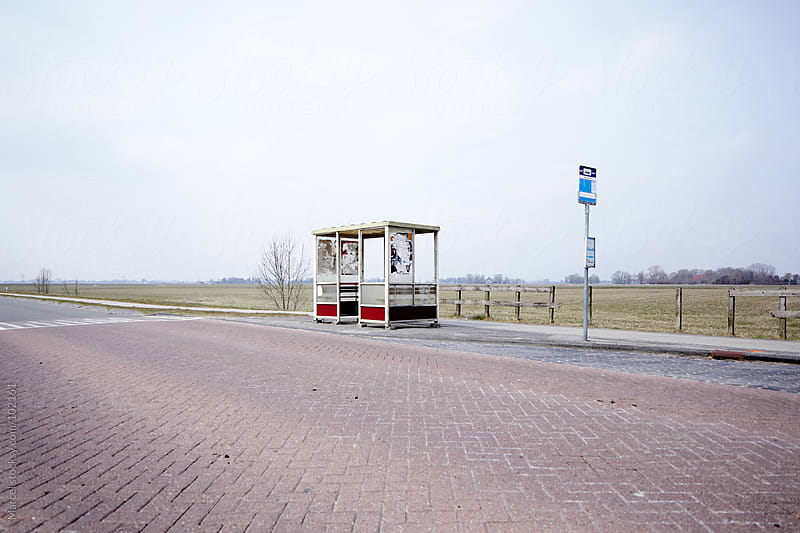 Lonely busstop in rural area by Marcel for Stocksy United