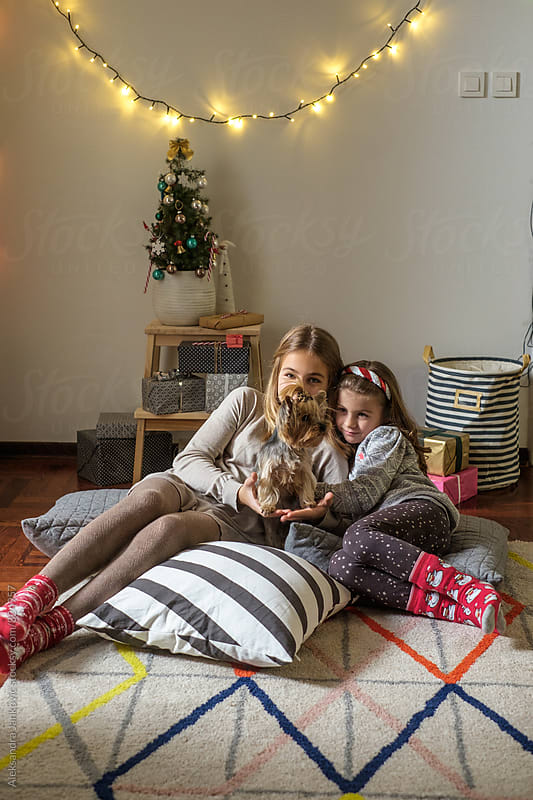 Two Little Girls and Their Dog Sitting by the Christmas Tree by Aleksandra Jankovic for Stocksy United