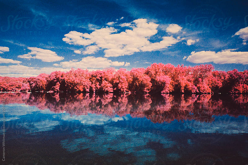 DMV in Infrared by Cameron Whitman for Stocksy United