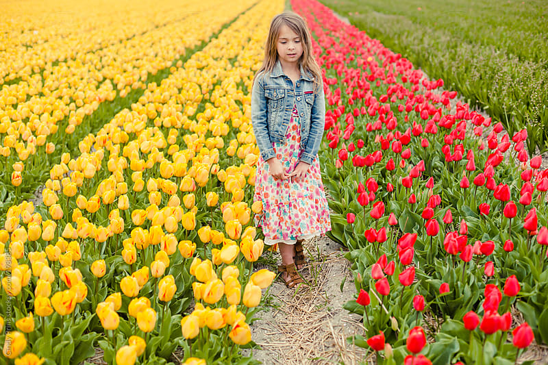 Little girl in flower dress standing in field of yellow and red tulips by Cindy Prins for Stocksy United