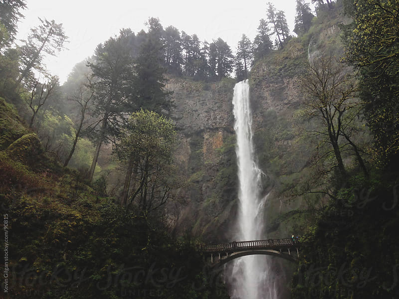 Multnomah Falls, OR by Kevin Gilgan for Stocksy United