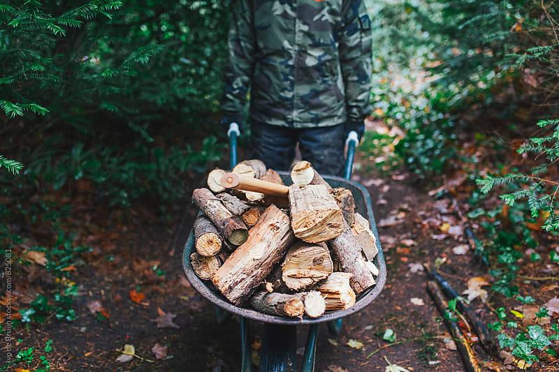A wheelbarrow full of chopped wood by Ivo de Bruijn for Stocksy United