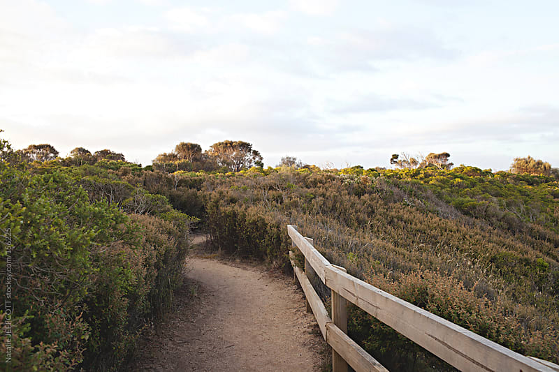 cliff top walk and path along the great ocean road / walk by Natalie JEFFCOTT for Stocksy United
