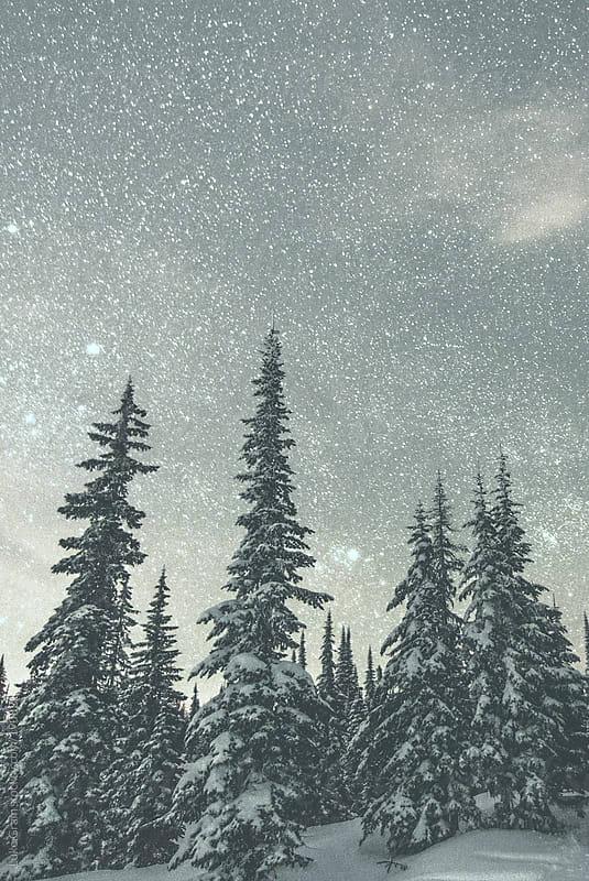 Stars over Big White by Luke Gram for Stocksy United