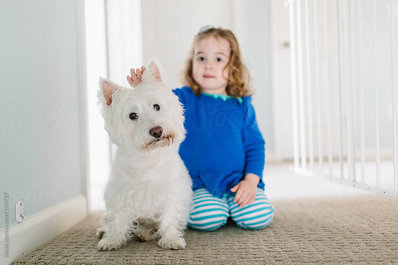 A toddler and a dog playing at home by Jakob for Stocksy United