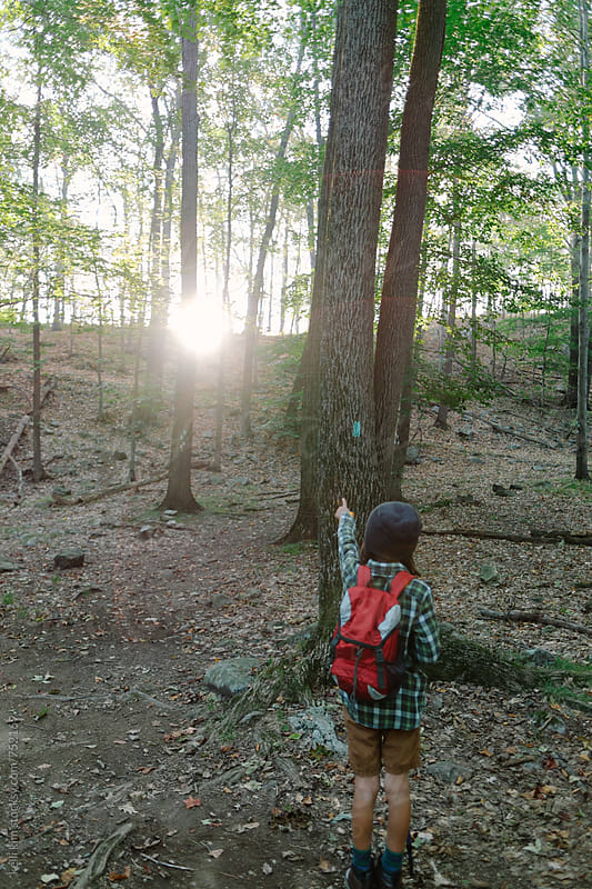Young boy on hike points at sunrise by kelli kim for Stocksy United