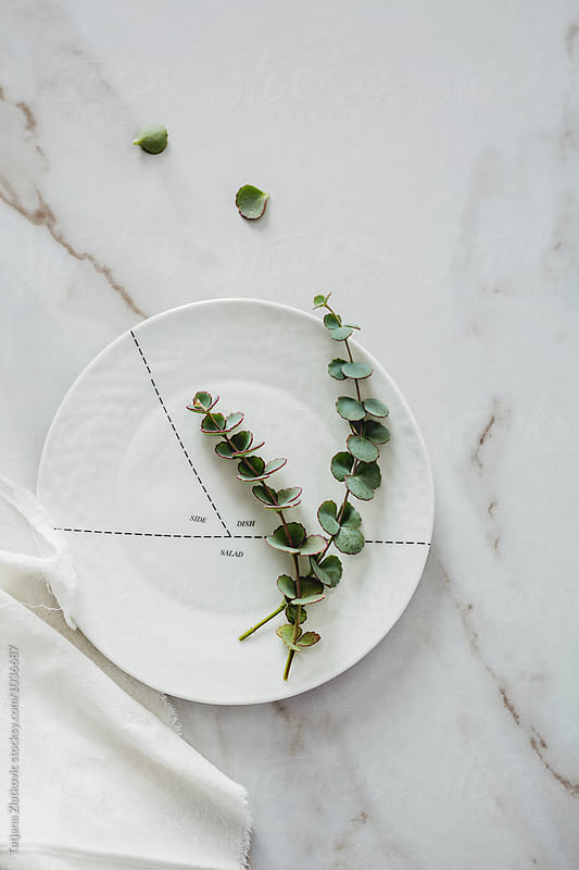 Porcelain plate with eucalyptus by Tatjana Ristanic for Stocksy United