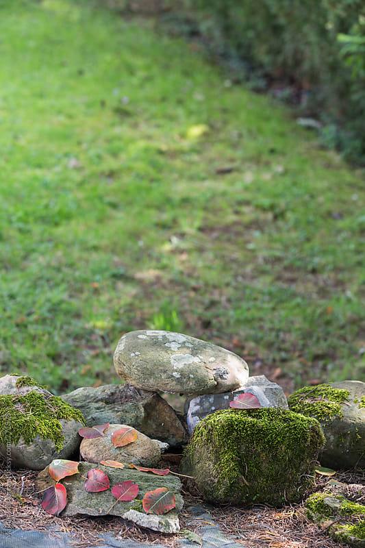 Mossy rocks and fall foliage by Marilar Irastorza for Stocksy United
