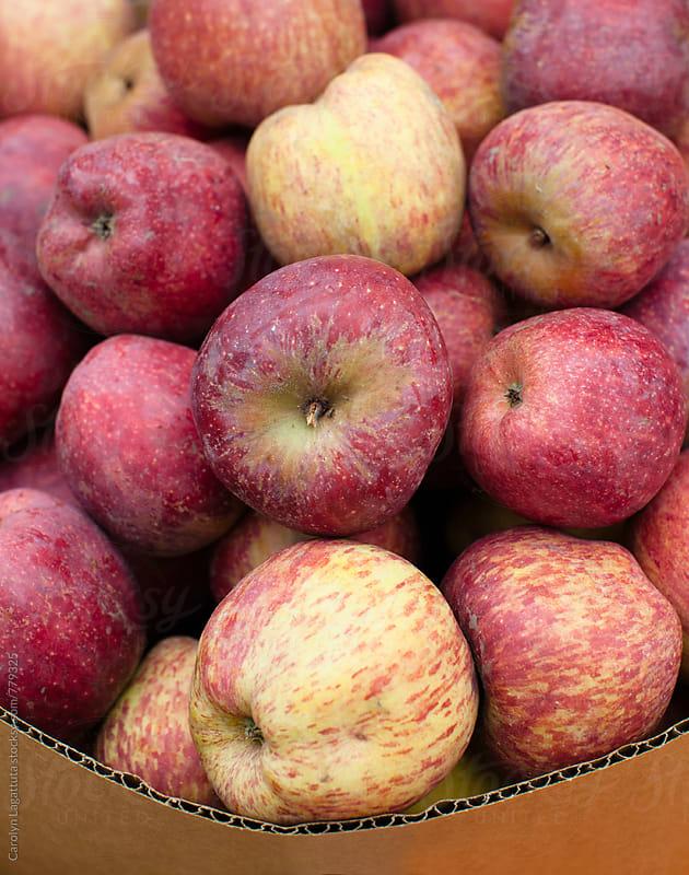 Box full of organic, red apples by Carolyn Lagattuta for Stocksy United