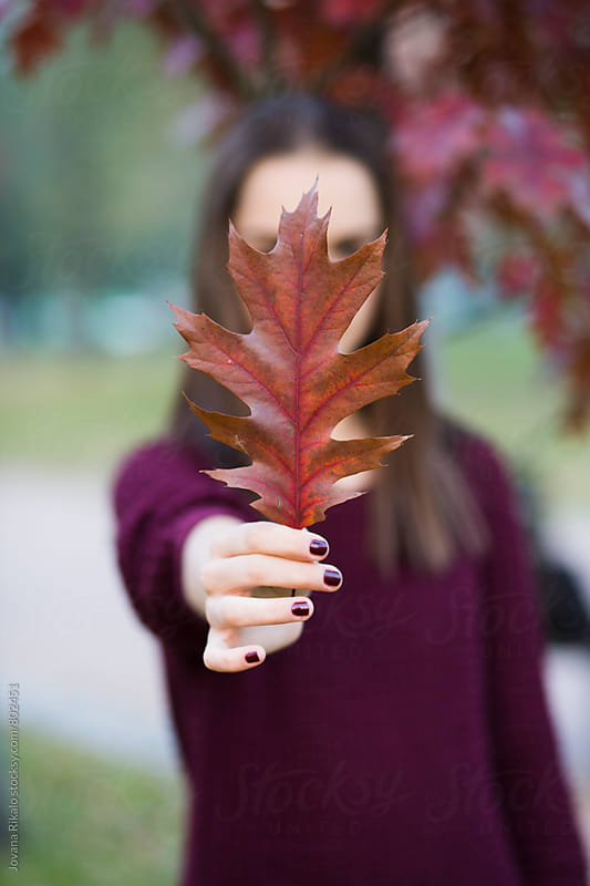 Girl holding a leaf by Jovana Rikalo for Stocksy United