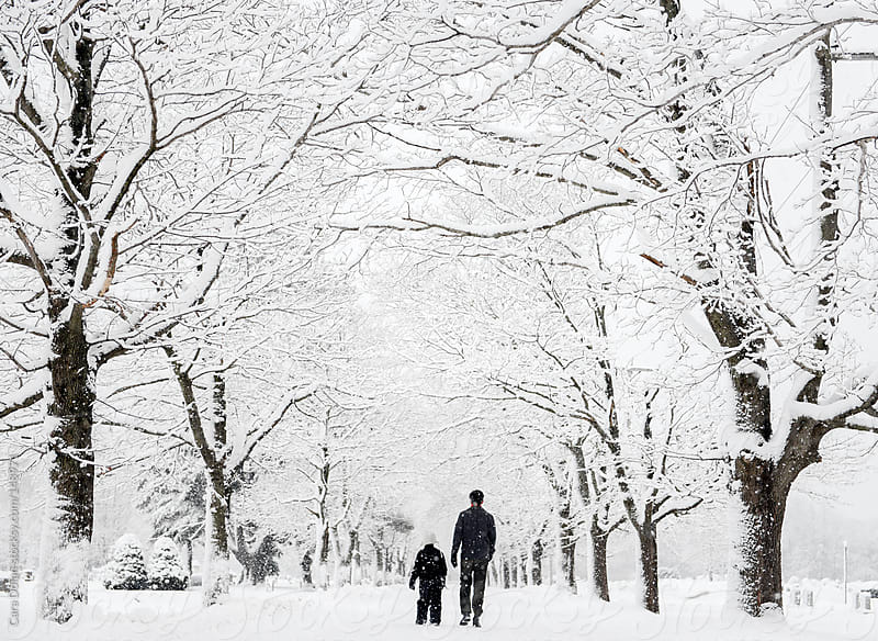 Boy and his dad walk together down a tree-lined street after a big snow by Cara Dolan for Stocksy United