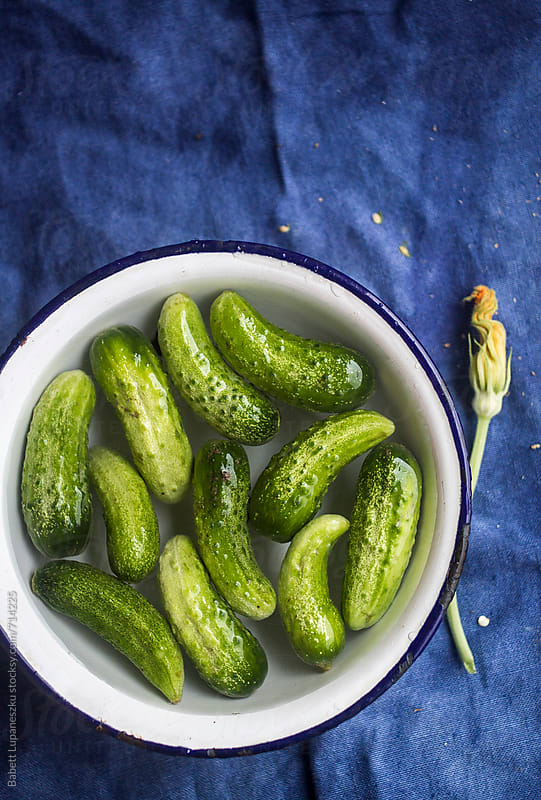 Washed cucumbers in bowl by Babett Lupaneszku for Stocksy United