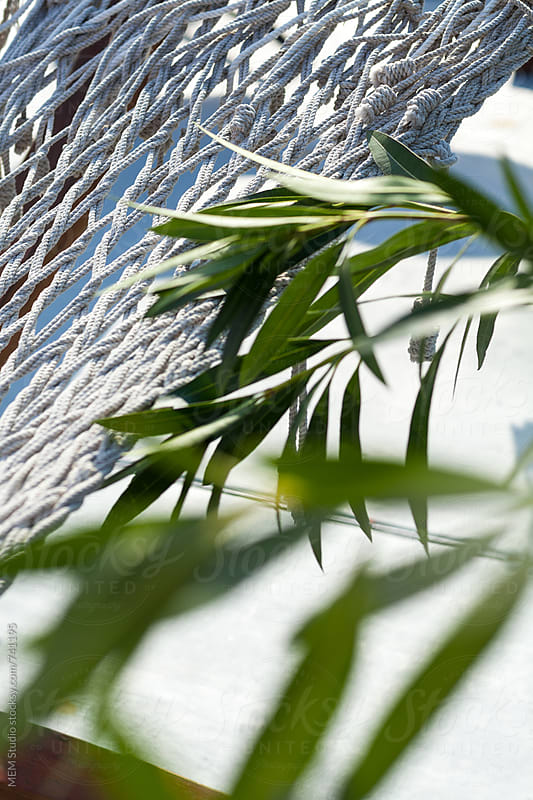 green twig on a white hammock by MEM Studio for Stocksy United