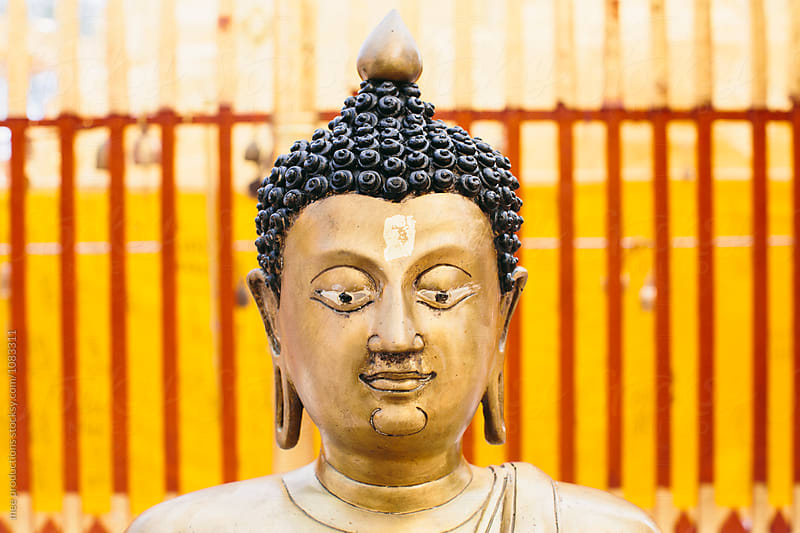 Buddha head staring at camera by mee productions for Stocksy United