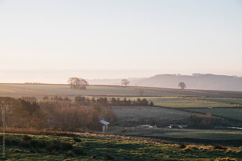 Early morning light at sunrise over a farm in Derbyshire, UK. by Liam Grant for Stocksy United