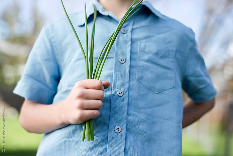 Boy holds a bunch of freshly-picked chives in his hand by Cara Slifka for Stocksy United