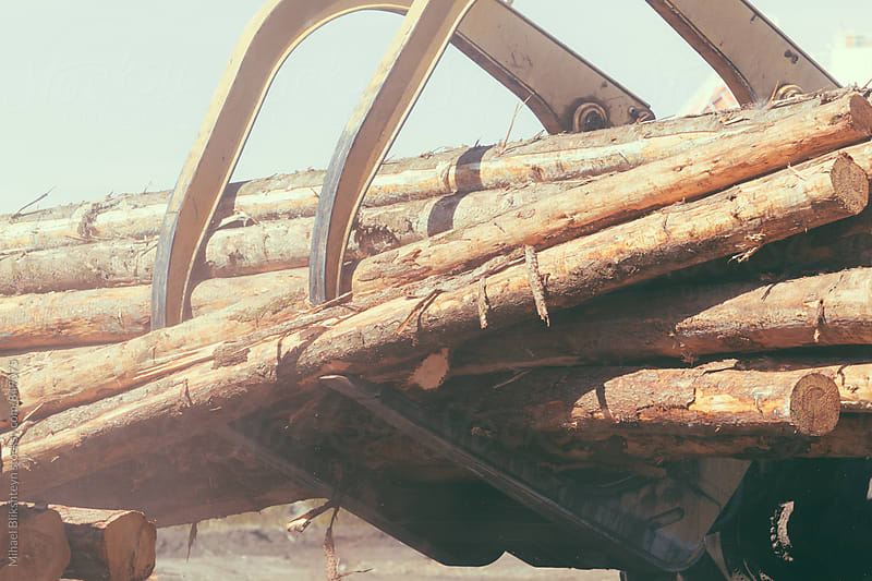 Closeup of a wheeled log front loader carrying tree trunks by Mihael Blikshteyn for Stocksy United