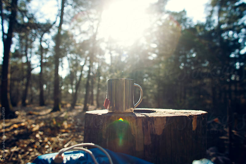 Aluminum cup with hot tea on a tree stump by Denni Van Huis for Stocksy United