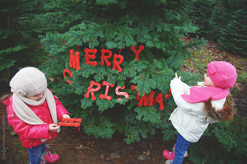 Girls decorate a live fir tree with wooden letters spelling Merry Christmas by Tana Teel for Stocksy United
