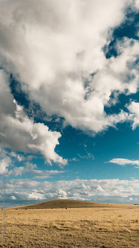 Dry Paddock under a Big Sky by Gary Radler Photography for Stocksy United