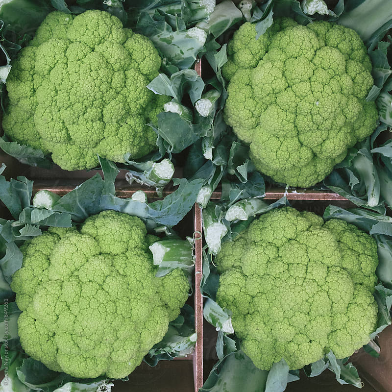 Fresh green cauliflower by Rowena Naylor for Stocksy United