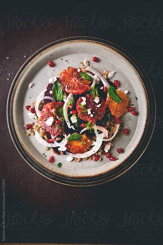 Blood orange beet fennel salad by Sophia van den Hoek for Stocksy United