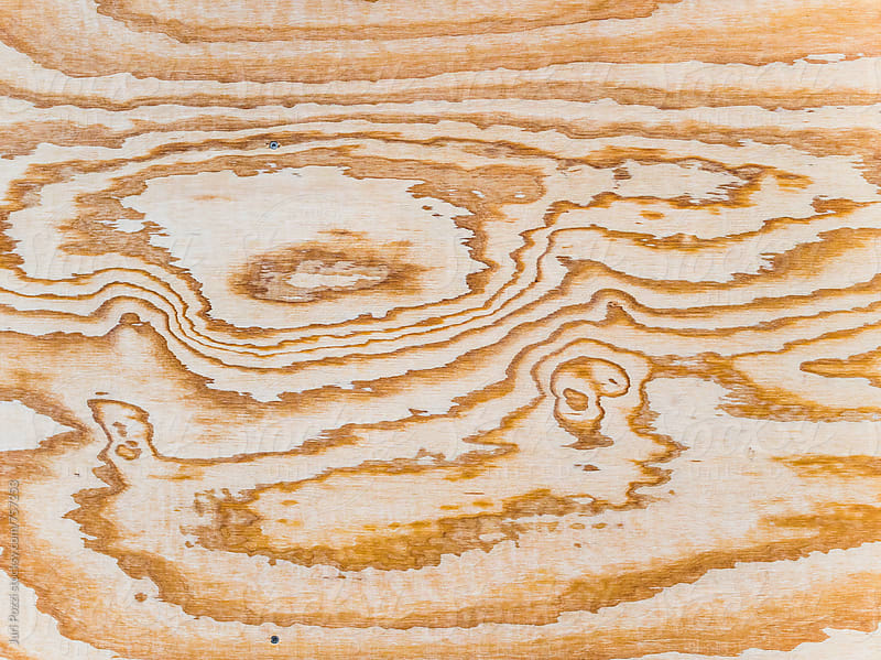 veining in a sliced piece of wood by Juri Pozzi for Stocksy United