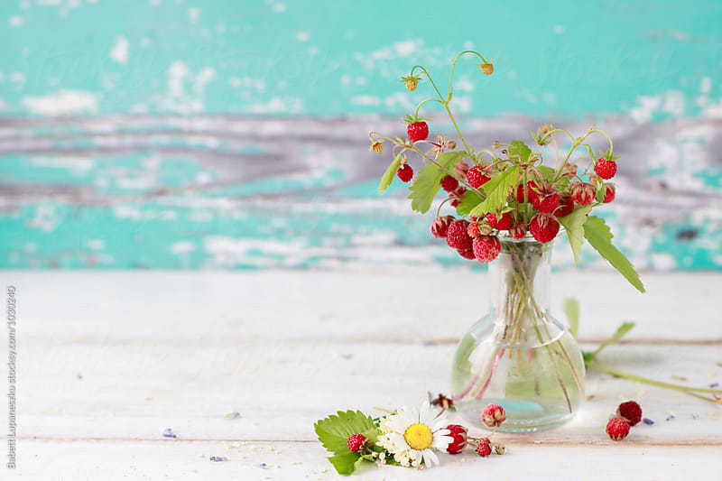 Wild strawberries in a vase by Babett Lupaneszku for Stocksy United