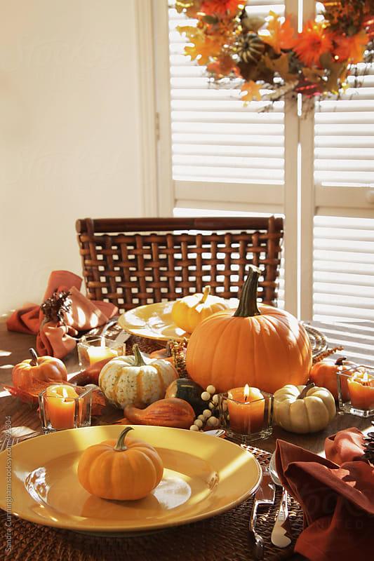 Festive table settings for Thanksgiving by Sandra Cunningham for Stocksy United