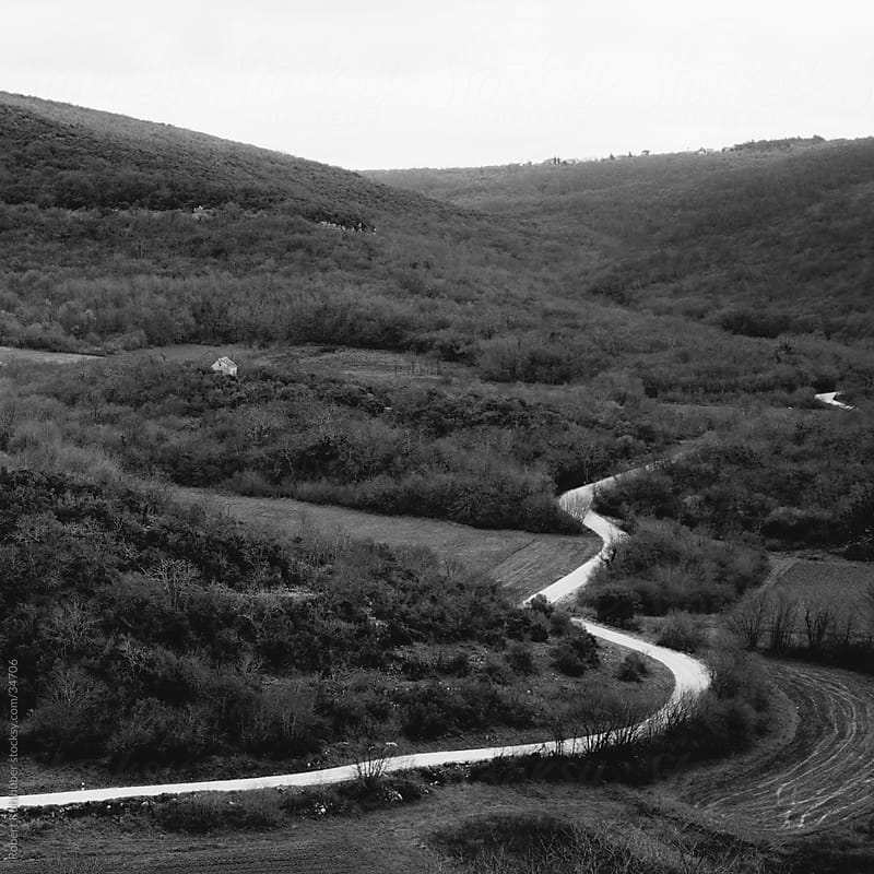 Curvy road in nature by Robert Kohlhuber for Stocksy United