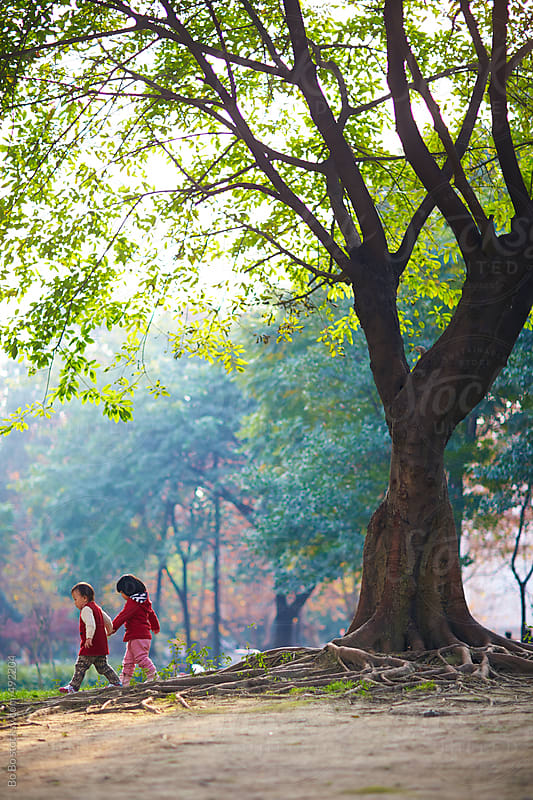 happy childhood under the big tree by Bo Bo for Stocksy United