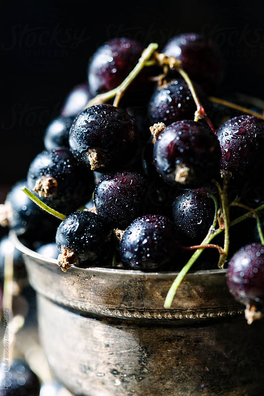 Closeup of washed blackcurrants in a metal bowl. by Darren Muir for Stocksy United