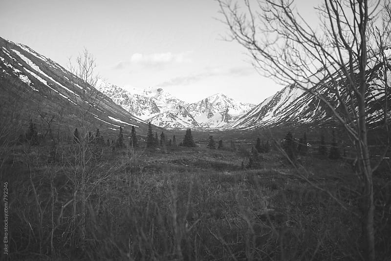 South Fork Trail BW by Jake Elko for Stocksy United