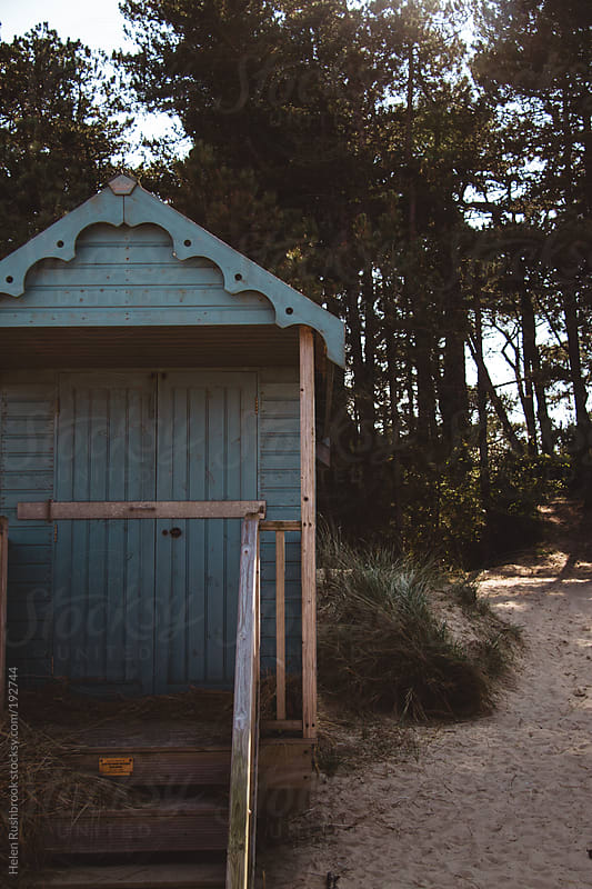 Beach Hut and pine trees by Helen Rushbrook for Stocksy United