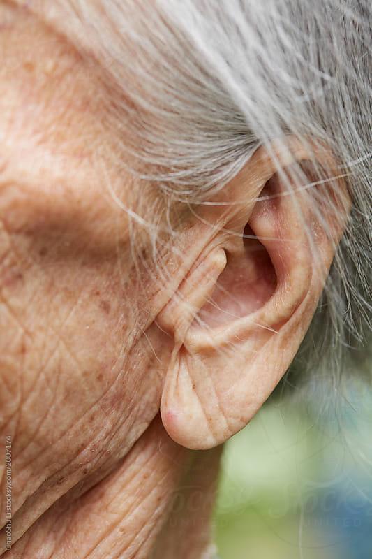 Closeup ears of big old woman
