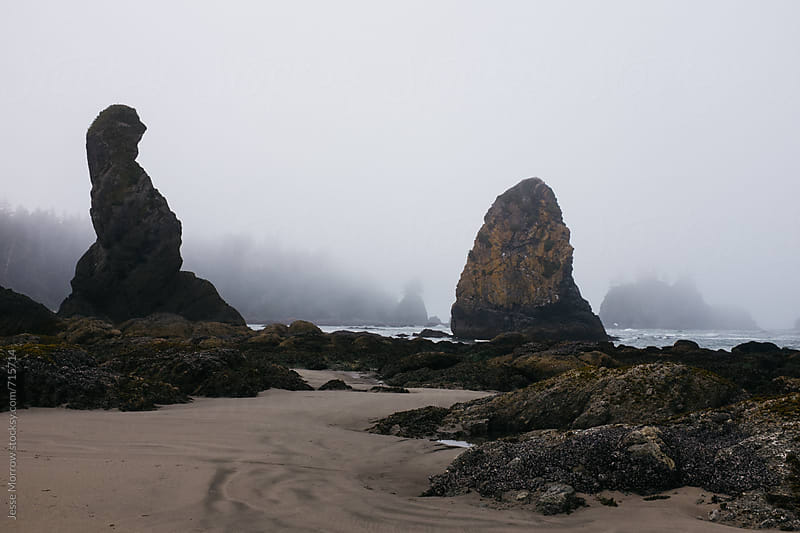 interesting landcape and rock formations shi shi beach washington usa by Jesse Morrow for Stocksy United