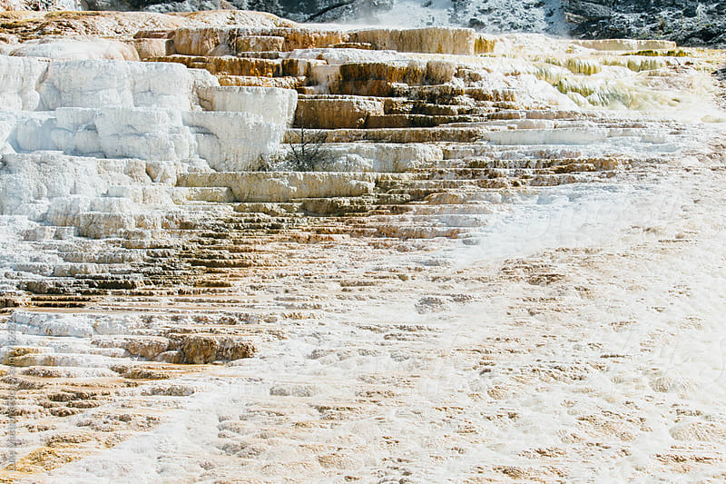Mammoth Hot Spring Terraces And Travertine In Yellowstone National Park by Luke Mattson for Stocksy United