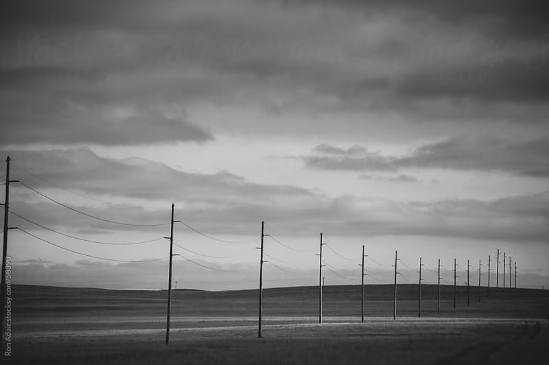 Power Poles lined along tire tracks in a field by Ron Adair for Stocksy United