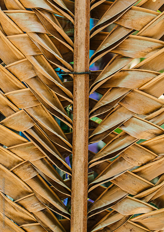 Brown background of braided palm leaf by Søren Egeberg Photography for Stocksy United