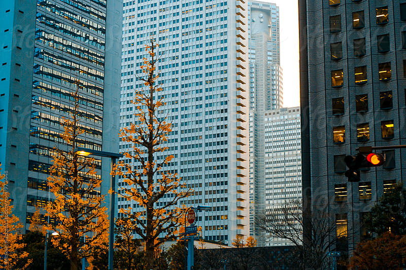 Tokyo city view. by Aliaksei Kaponia for Stocksy United