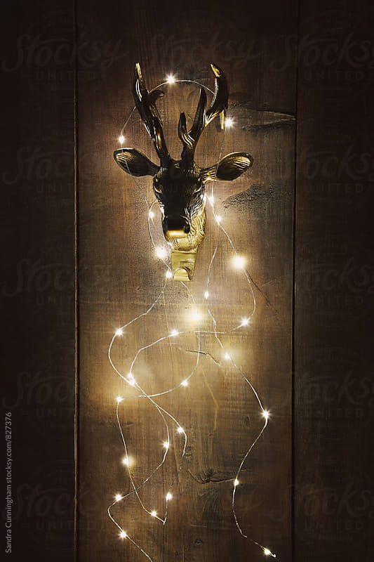 Brass deer head with Christmas lights by Sandra Cunningham for Stocksy United