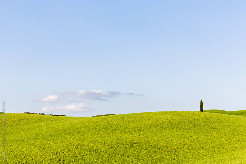 Minimalist landscape by Marilar Irastorza for Stocksy United