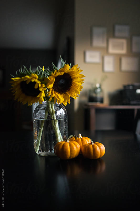 Small pumpkins sit next to a mason jar with sunflowers. by Riley J.B. for Stocksy United
