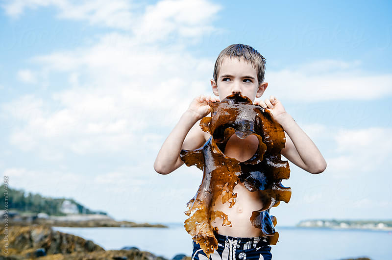Goofy boy pretends a piece of kelp is a giant mustache by Cara Dolan for Stocksy United