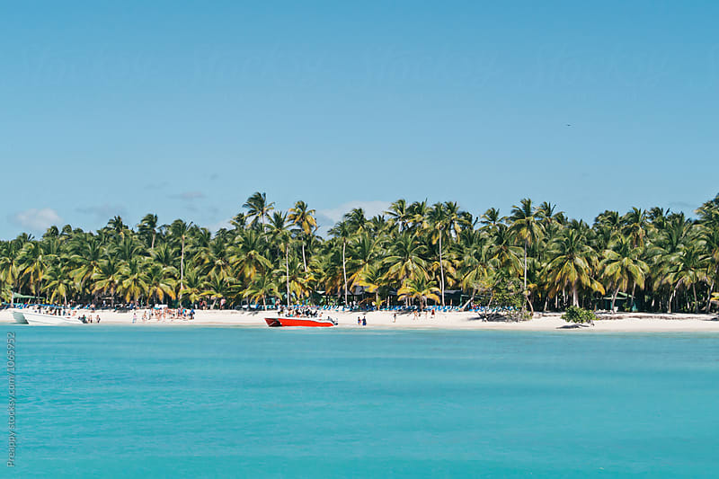 Isla Saona, Dominican Republic by Preappy for Stocksy United