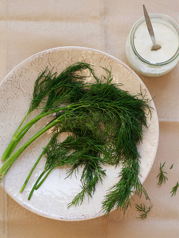 Fresh dill and Creme fraiche  by Dobránska Renáta for Stocksy United