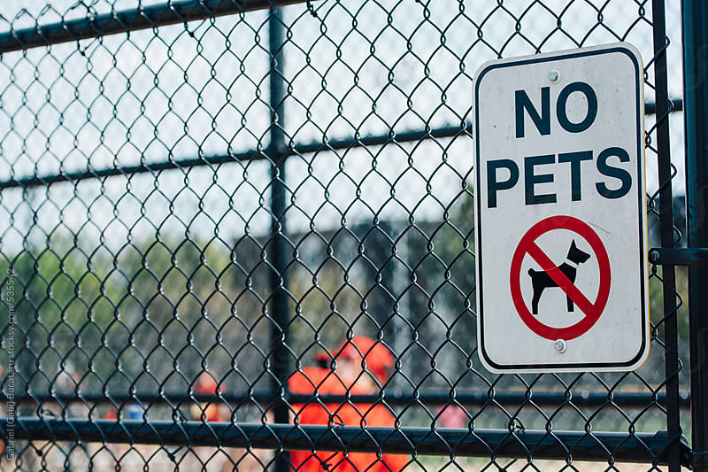 No pets sign on a fence at a junior baseball game by Gabriel (Gabi) Bucataru for Stocksy United